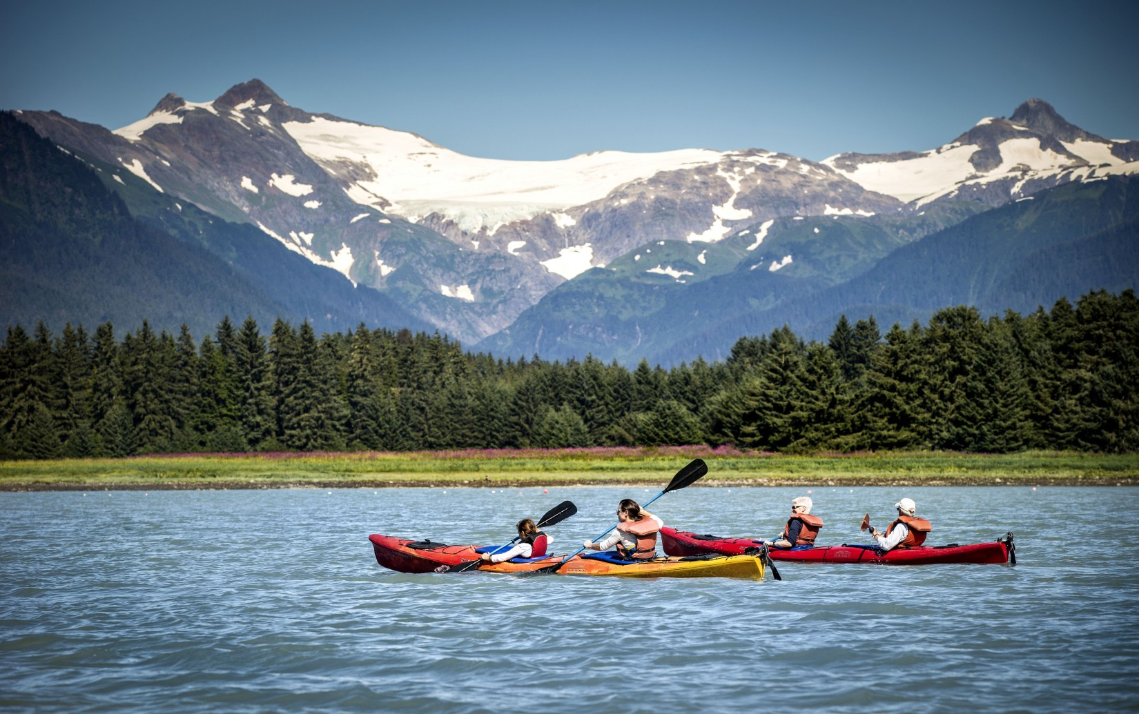Top 9 Coolest Things To Do In Alaska Royal Caribbean Connect