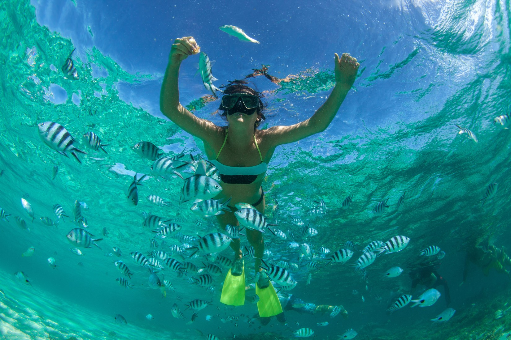 under-the-sea-royal-caribbean